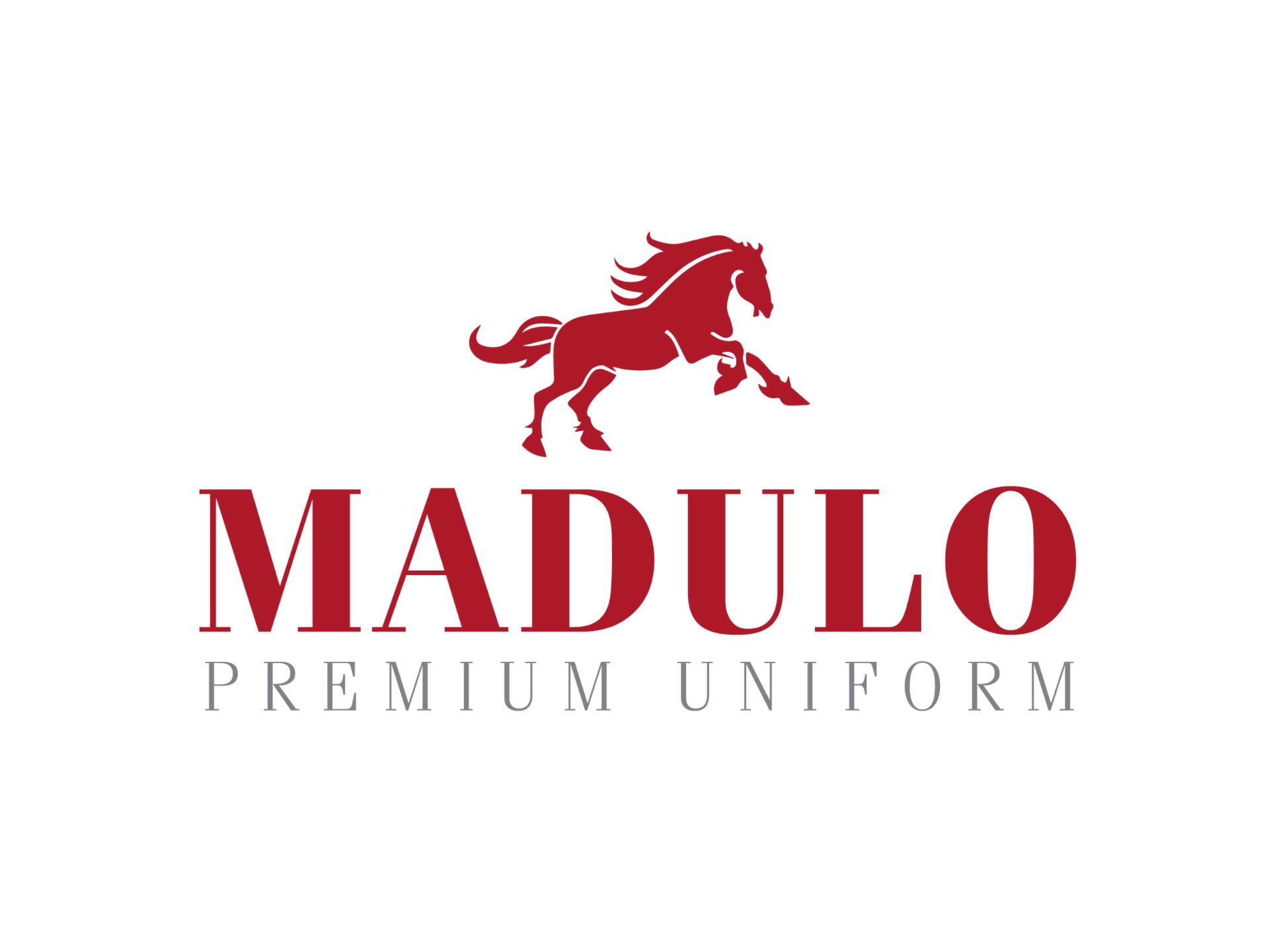 MyXteam – Giải pháp công nghệ giúp Công ty cổ phần Madulo làm việc hiệu quả hơn